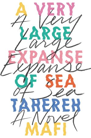 A Very Large Expanse of Sea book image