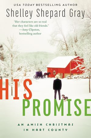 His Promise book image