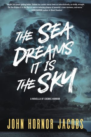 The Sea Dreams It Is the Sky book image