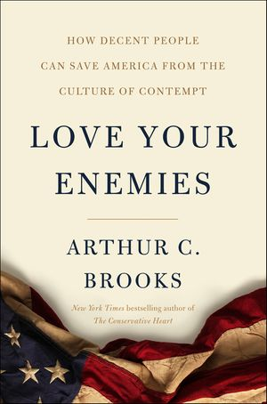 Love Your Enemies book image