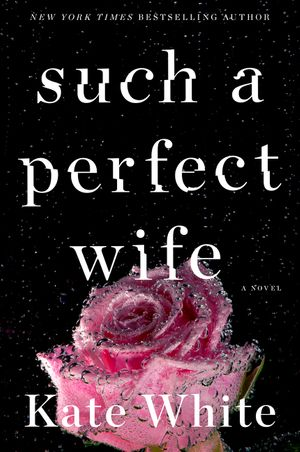 Such a Perfect Wife book image