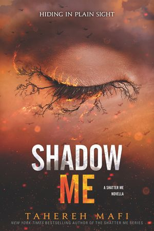 Shadow Me book image