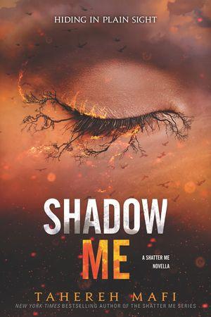 Shatter Me Novella #3 book image