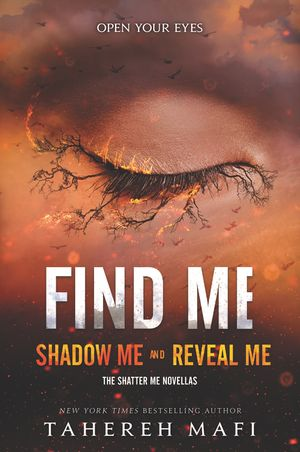 Find Me book image