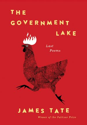 The Government Lake book image