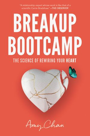 Breakup Bootcamp book image