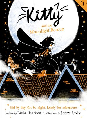 Kitty and the Moonlight Rescue book image