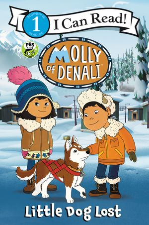 Molly of Denali: Little Dog Lost book image