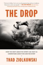 Book cover image: The Drop