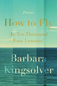 how-to-fly-in-ten-thousand-easy-lessons