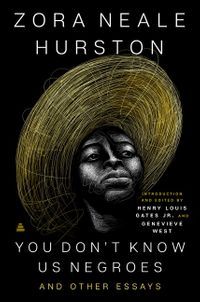 you-dont-know-us-negroes-and-other-essays