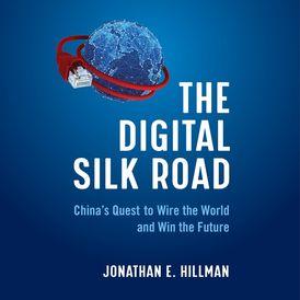 The Digital Silk Road