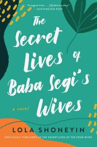 secret-lives-of-baba-segis-wives-the