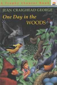 one-day-in-the-woods