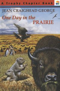 one-day-in-the-prairie