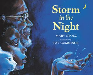 Storm in the Night book image