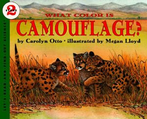 What Color Is Camouflage? book image