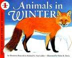 animals-in-winter