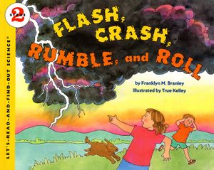 Flash, Crash, Rumble, and Roll book image