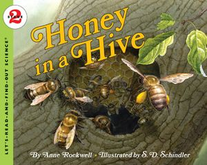 Honey in a Hive book image