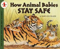 how-animal-babies-stay-safe