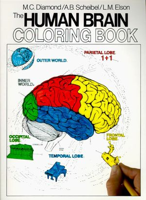 The Human Brain Coloring Book book image