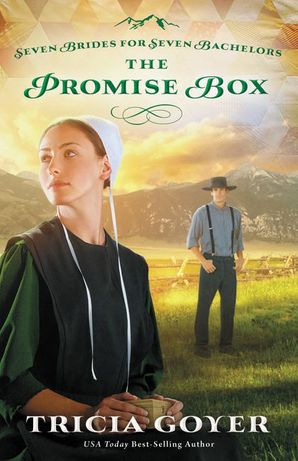 Seven Brides For Seven Bachelors/Promise Box Paperback  by Tricia Goyer