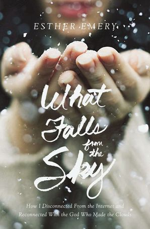 What Falls from the Sky Hardcover  by