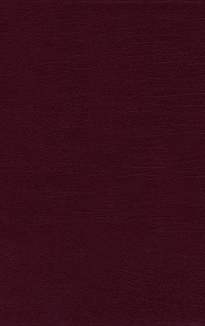 NRSV, Thinline Bible, Bonded Leather, Burgundy, Comfort Print Hardcover  by No Author