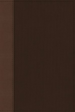 NRSV, Cultural Backgrounds Study Bible, Leathersoft, Tan/Brown, Comfort Print: Bringing to Life the Ancient World of Scripture Hardcover  by