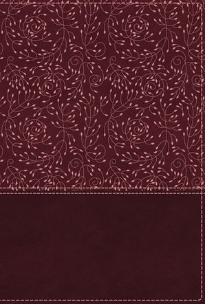 NRSV, Cultural Backgrounds Study Bible, Leathersoft, Burgundy, Comfort Print: Bringing to Life the Ancient World of Scripture Hardcover  by