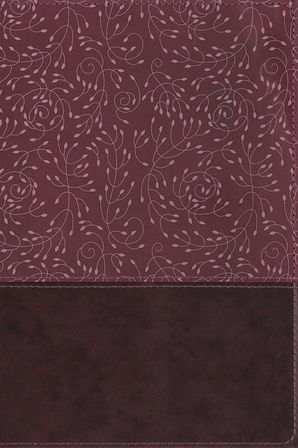 NRSV, Thinline Reference Bible, Leathersoft, Burgundy, Indexed, Comfort Print Hardcover  by No Author