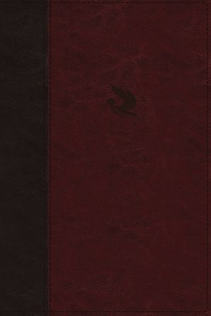 NKJV, Spirit-Filled Life Bible, Third Edition, Imitation Leather, Burgundy, Indexed, Red Letter Edition, Comfort Print