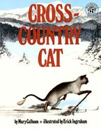 cross-country-cat