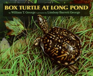 Box Turtle at Long Pond book image