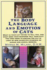 Cats Body Language