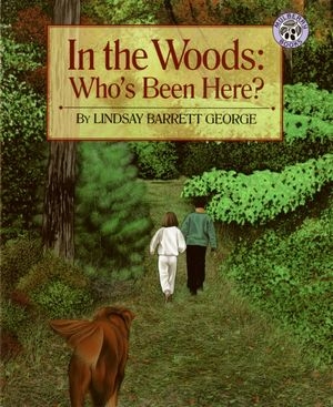 In the Woods: Who's Been Here? book image