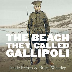 Cover image - The Beach They Called Gallipoli