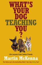 whats-your-dog-teaching-you