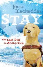 Stay: The Last Dog In Antarctica Paperback  by Jesse Blackadder