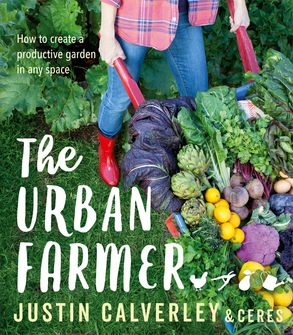 Cover image - The Urban Farmer: How to Create a Productive Garden in Any Space