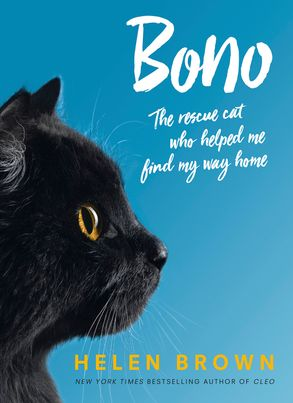 Cover image - Bono: the rescue cat who helped me find my way home