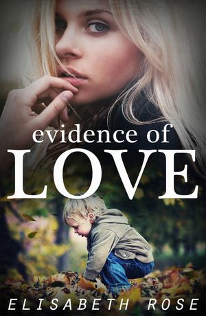 Evidence Of Love book image
