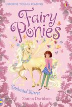 Fairy Ponies Enchanted Mirror Hardcover  by Zanna Davidson