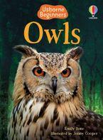 Owls (Beginners) Hardcover  by Emily Bone