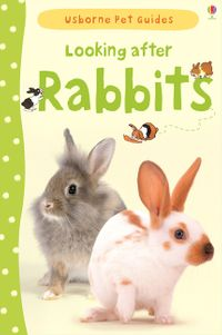 looking-after-rabbits-usborne-pet-guides