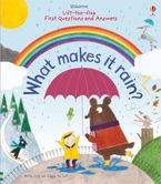 Lift-the-flap First Questions & Answers what makes it rain? Hardcover  by Katie Daynes