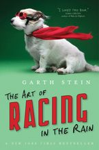 Art Of Racing In The Rain Paperback  by Garth Stein