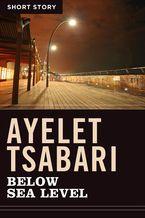 Below Sea Level eBook  by Ayelet Tsabari