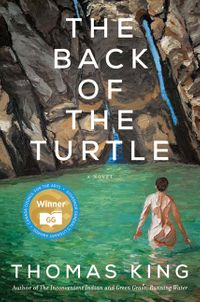 the-back-of-the-turtle